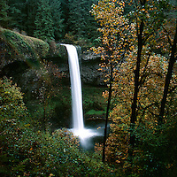 Waterfall seen from canyon rim with fall foliage. Oregon, Silver Falls State Park.