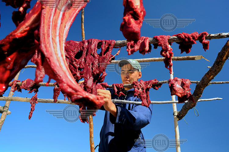 Damian Kailek from the Dene First Nation hangs freshly butchered caribou meat on a rack to dry. The animal was shot in the Thelon Wildlife Sanctuary a remote wilderness and the biggest wildlife sanctuary in North America.