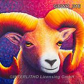 Simon, REALISTIC ANIMALS, REALISTISCHE TIERE, ANIMALES REALISTICOS, innovativ, paintings+++++RachelFroud_Ram,GBWR316,#a#, EVERYDAY