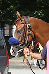 25 JUL 2009: Funny Moon with Alan Garcia up win the 93rd running of the Grade 1 Coaching Club American Oaks.  Run at 1 1/4 mile, at Belmont Park