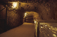 The underground wine cellar cut out of the rock, using an old lime stone quarry at Chateau de Targe of Edouard Pisani in Saumur Champigny, Maine et Loire France