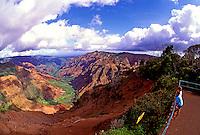 Tourists gaze at the beautiful scenery along the scenic overlook at colorful Waimea Canyon on Kauai.