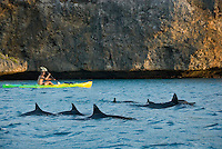 Santa Cruz, Curacao, Netherlands Antilles, April 2009. Dolphins come and play with our kayaks. Extreme kayaker, Eco promoter and TV host, Ryan the Jongh takes us kayaking to his favourite places along the Curacao Coast. Photo by Frits Meyst/Adventure4ever.com