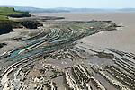Kilve beach Quantock Hills Somerset  UK,  at low tide showing stratification of rock formation.  Stratified rock formation.