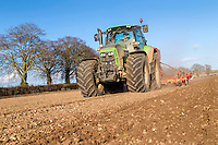 Drilling spring malting barley after sugar beet - Norfolk, March