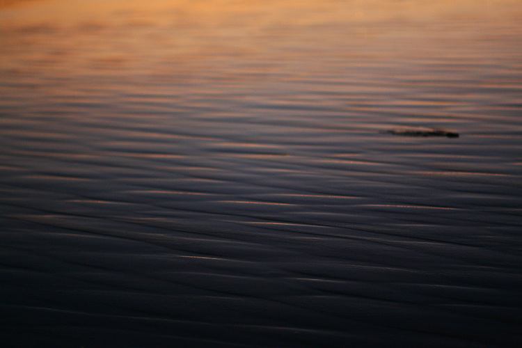 December 5, 2007; Santa Cruz, CA, USA; Water flows back out to sea at Santa Cruz beach in Santa Cruz, CA. Photo by: Phillip Carter
