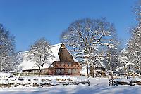 Spiekerhof in Hamburg Voksdorf im Winter: EUROPA, DEUTSCHLAND, HAMBURG, (EUROPE, GERMANY), 12.03.2013: Spiekerhof in Hamburg Volksdorf im Winter. Das Spiekerhus von 1624 ist das aelteste Volksdorfer Haus..Das Spiekerhus ist das ehemaligen Wohnhaus  in Volksdorf und steht noch am urspruenglichen Ort. Anhand einer Untersuchung im Sommer 2010 konnte es eindeutig auf das Baujahr 1624 datiert werden. Die Eichenstaemme waren im Winter 1623/24 geschlagen worden. Das Haus ist damit das aelteste Geestbauernhaus Hamburgs...