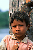 Mato Grosso, Brazil. Young Rikbaktsa (Canoeiro) Indian boy next to a tree.