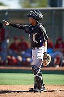 Colorado Rockies Joel Diaz (29) during an Instructional League game against the Los Angeles Angels of Anaheim on October 6, 2016 at the Tempe Diablo Stadium Complex in Tempe, Arizona.  (Mike Janes/Four Seam Images)