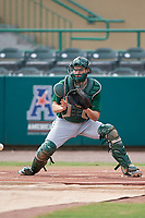 Dartmouth Big Green catcher Bennett McCaskill (18) during practice before a game against the USF Bulls on March 17, 2019 at USF Baseball Stadium in Tampa, Florida.  USF defeated Dartmouth 4-1.  (Mike Janes/Four Seam Images)