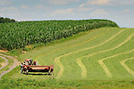 Union County fieldscape with corn and tractor and mower cutting silage.
