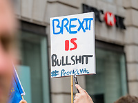 "London, UK - March 23 2019: the ""Brexit is Bullshit"" banner during the demonstration the people Brexit march for people's vote protest. Photo Adamo Di Loreto/BuenaVista*photo"