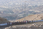 The lead group on Jebel Hafeet during Stage 3 of the 2021 UAE Tour running 166km from Al Ain to Jebel Hafeet, Abu Dhabi, UAE. 23rd February 2021.  <br /> Picture: LaPresse/Fabio Ferrari | Cyclefile<br /> <br /> All photos usage must carry mandatory copyright credit (© Cyclefile | LaPresse/Fabio Ferrari)