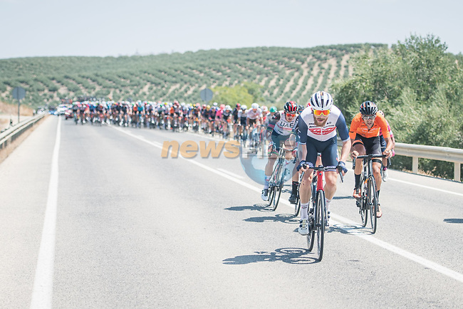 Quinn Simmons (USA) Trek-Segafredo tries to breakaway during Stage 12 of La Vuelta d'Espana 2021, running 175km from Jaén to Córdoba, Spain. 26th August 2021. <br /> Picture: Unipublic/Charly Lopez   Cyclefile<br /> <br /> All photos usage must carry mandatory copyright credit (© Cyclefile   Charly Lopez/Unipublic)