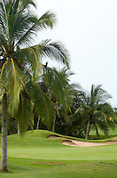 Marina Ixtapa Golf Course is one of two 18-hole public golf courses in  Zihuatanejo/Ixtapa. Many locals and visitors (especially the Canadian and American tourists it attracts) consider this the best -- and most challenging. The course has 86 sand traps and water features that are home to crocodiles. Green fees are $80 US per person during high season and $55 US per person in low season (not including cart).  (taken August 2007).  Photo by Patrick Schneider Photo.com
