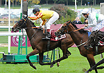 10 October 02: Maria Royal (no. 7), ridden by Gerald Mosse and trained by Alain de Royer Dupre, wins the group 2 Prix de Royallieu for fillies and mares three years old and upward at Longchamp Racecourse in Paris, France.  (Bob Mayberger/Eclipse Sportswire)