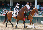 June 26,, 2021: #2Mutakatif (IRE) in the Wise Dan Stakes (Grade 2) on the turf at Churchill Downs.  Louisville, KY on June 26, 2021.  Candice Chavez/ESW/CSM