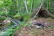 Abandoned campsite in the Mount Flume Valley of the Pemigewasset Wilderness in the New Hampshire White Mountains. At 45,000 acres, the Pemigewasset Wilderness is an ideal wilderness for primitive camping.