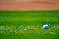19 February 2011: A Lone Baseball rests on the turf during Spring Training at the Carl Barger Baseball Complex in Viera, Florida. Mandatory Credit: Ed Wolfstein Photo