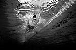Erika Fairweather.  Olympic Swim Team Training and Portraits, Millennium Institute, Auckland, New Zealand. Thursday 15 July 2021 Photo: Simon Watts/www.bwmedia.co.nz