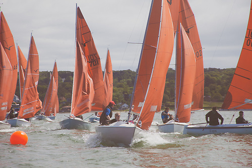 There was a 17-boat fleet for the Squib Northerns on Belfast Lough