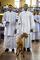 Nigeria. Enugu State. Enugu. Catholic church. Bigard Memorial Seminary is the largest seminary in Africa. Two Igbo seminarian with a goat as offering during the morning mass marking the end of the  2018 / 2019 Academic and Formation Year.  Bigard Memorial Seminary was composed in 2019 by 63 members of academic staff (22 resident as priest-formators and 46 part-time) and 832 students. The seminary had over the years produced 3 Cardinals, 13 Archbishops, 32 Bishops and numerous priests. Theology is the systematic study of the nature of the divine and, more broadly, of religious belief. Enugu is the capital of Enugu State, located in southeastern Nigeria. 29.06.19 © 2019 Didier Ruef
