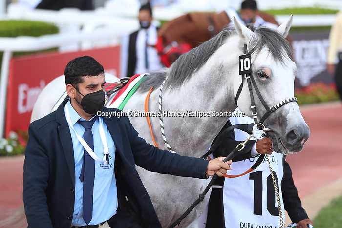 March 27 2021: MUBASHER AL KHALEDIAH (SA) #10, in the post parade for the Dubai Kahayla Classic at Meydan Racecourse, Dubai, UAE. Shamela Hanley/Eclipse Sportswire/CSM