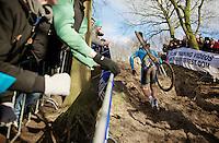 Sven Nys (BEL) up the steep climb<br /> <br /> 2014 UCI cyclo-cross World Championships, Elite Men