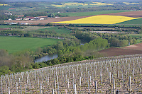 Europe/France/Bourgogne/89/Yonne/Irancy : Paysages du vignoble d'Irancy et vallée de l'Yonne au printemps