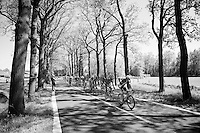 just beyond the feed zone<br /> <br /> stage 3: Nijmegen-Arnhem (NLD) 190km<br /> 99th Giro d'Italia 2016