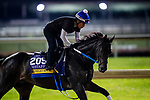 October 31, 2018 : Midnight Bisou, trained by Steven M. Asmussen, exercises in preparation for the Breeders' Cup Distaff at Churchill Downs on October 31, 2018 in Louisville, Kentucky. Evers/ESW/Breeders Cup