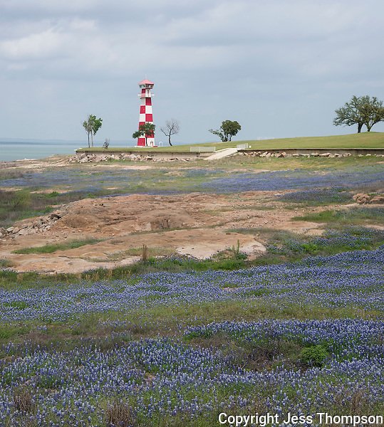 Bluebonnets near the lighthouse at Buchanan Dam, TX