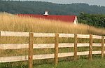 Red barn roof in field of high grass with wood fence Commonwealth of Virginia, Fine Art Photography by Ron Bennett, Fine Art, Fine Art photography, Art Photography, Copyright RonBennettPhotography.com ©