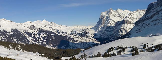 The Wetterhorn mountain from Kleiner Scheidegg - near Grindelwald - Swiss Alps - Switzerland