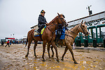 BALTIMORE, MD - MAY 17:  Justify with Humberto Gomez up if accompanied off the track by assistant trainer Jimmy Barnes at Pimlico Racecourse on May 17, 2018 in Baltimore, Maryland. (Photo by Alex Evers/Eclipse Sportswire/Getty Images)