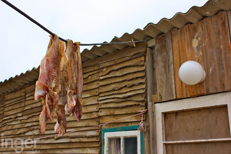 Drying Fish at Kassiesbaai Fishing Village outside Arniston, South Africa