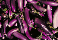 Long and slender purple and white eggplants with green stems in a large pile,.