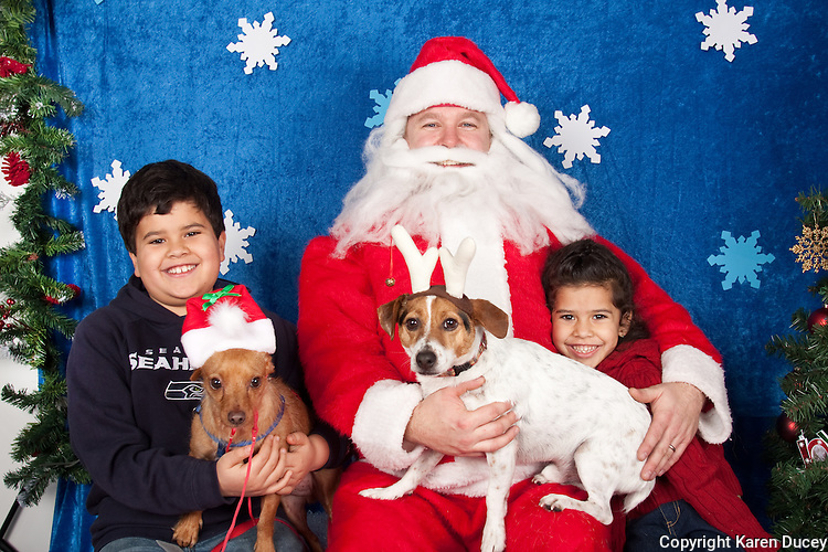Dogs are photographed with Santa at a fundraiser for Dogs Deserve Better at Pet Pros in Redmond, WA on December 12, 2010. (photo by Karen Ducey)Lucky Fifa and his family are photographed with Santa at a fundraiser for Dogs Deserve Better at Pet Pros in Redmond, WA on December 12, 2010. (photo by Karen Ducey)