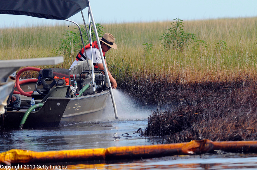 GRAND ISLE, LA - JUNE 19: A worker washes the oiled grass in Barataria Bay where oil has reached 20 miles north of Grand Isle, La., June 19, 2010.   (Photo by Cheryl Gerber/Getty Images)