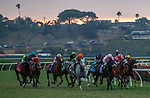 """DEL MAR, CA  AUGUST 21: The field of the Del Mar Handicap (Grade ll) Breeders Cup """"Win and You're In"""" Turf Division on August 21, 2021 at Del Mar Thoroughbred Club in Del Mar, CA (Photo by Casey Phillips/Eclipse Sportswire/CSM)"""