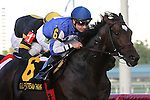 Summer Front with jockey Joe Bravo on board wins the Fort Lauderdale Stakes (G2T) at Gulfsteam Park, Hallandale Beach, Florida 01-11-2014