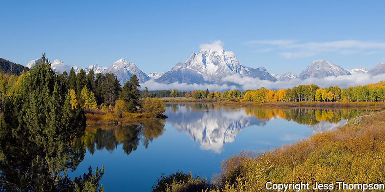 Panoramic image of Fall Colors at Oxbow Bend, Grand Tetons National Park
