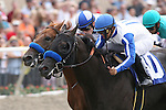 25 July 2009: Tiny Woods by Roman Ruler breaks his maiden under jockey Mike Smith, defeating Sidney's Candy (by Candy Ride) and Joe Talamo at Del Mar Race Track, Del Mar, CA