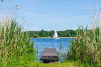Holzsteg und Segelboot, Altstadtinsel Werder (Havel), Potsdam-Mittelmark, Brandenburg, Deutschland