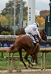 November 2, 2018: Improbable #2, ridden by Drayden Van Dyke, wins the Street Sense Stakes on Breeders' Cup World Championship Friday at Churchill Downs on November 2, 2018 in Louisville, Kentucky.  Casey Phillips/Eclipse Sportswire/CSM