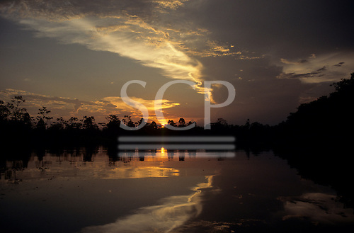 Amazon, Brazil. Rainforest river bank reflected in the water at sunset. Ariau jungle lodge, Amazonas State.