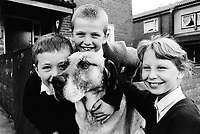 England. Greater Manchester. Salford.  Three children wearing their school uniforms and a dog. Salford is a city in the Metropolitan Borough of Salford in Greater Manchester. North West England is one of nine official regions of England. © 1990 Didier Ruef