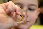 """WOODBURY CT. 30 December 2013-123013SV09-Henry Trombetto of Woodbury checks out the Mealworms during a program called """"How Cool is That?!"""" at the library in Woodbury Monday. This class was called Mealworm Madness. Children discussed food and color preference, texture and length of mealworms while learning.<br /> Steven Valenti Republican-American"""
