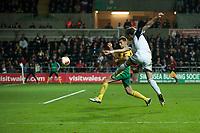 Thursday 24 October 2013  <br /> Pictured: <br /> Re:UEFA Europa League, Swansea City FC vs Kuban Krasnodar,  at the Liberty Staduim Swansea