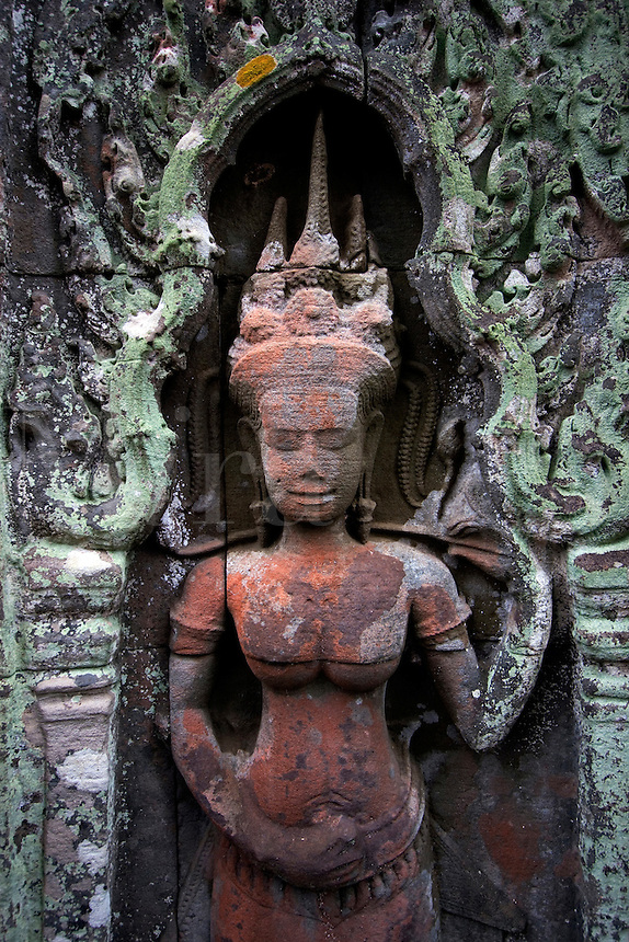 Lichen grows on a stone carved bas relief  Apsara (celestial maiden) at Ta Prohm, built by Jayavarman VII & part of the  Angkor Wat temple complex - Siem Reap, Cambodia...